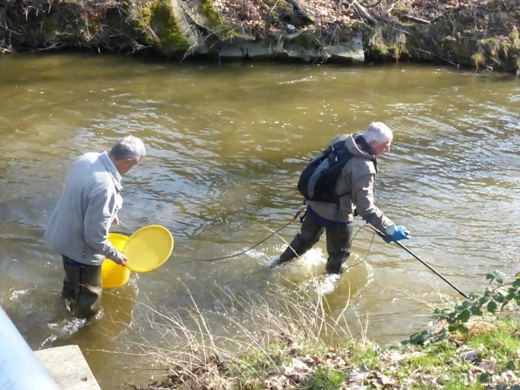 Elektrobefischung in der Holtemme durch Ulrich Eichler und Otfried Wüstemann.